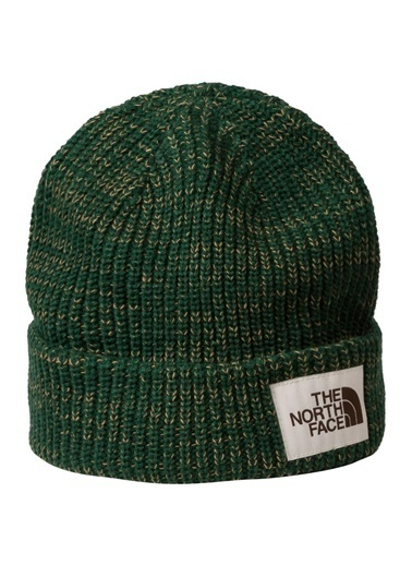 The North Face The North Face Salty Dog Beanie Erkek Bere Yeşil Yeşil